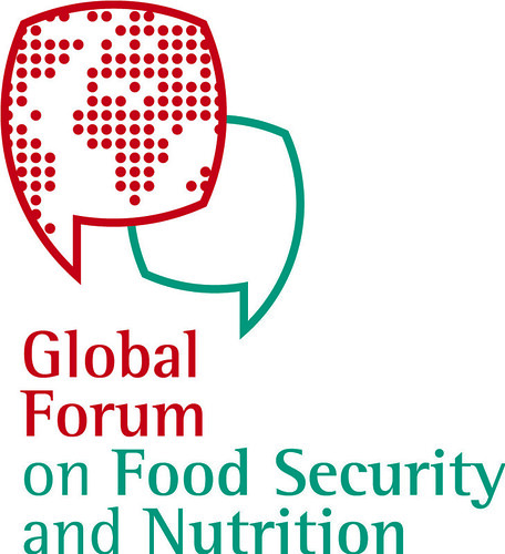 The Food Security and Nutrition Forum (17)