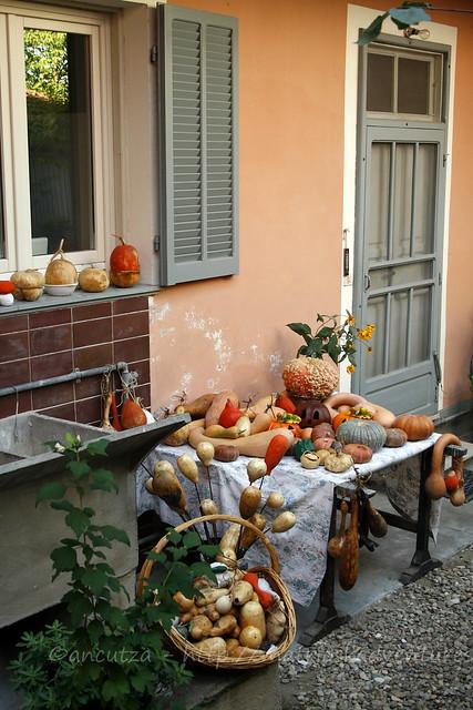 casa e giardino decorate con zucche