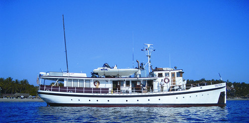 wood classic boat wooden yacht motoryacht fantail