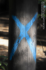 Gebo ᚷ (Myrkwood666) Tags: symbol pagan rune futhark gebo asatru gyfu seelenwinter mørkskygge myrkwood666