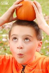Week 41 - Pumpkins SOOC