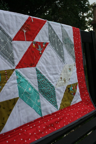 6257967114 3f714f074f The Little Apples Quilt