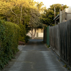 Alley View (Dr Abbate) Tags: trees fence alley perspective hedge lane laneway