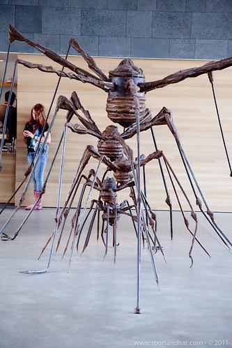 SF MoMA