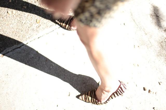 Tiger Stripe Shoes