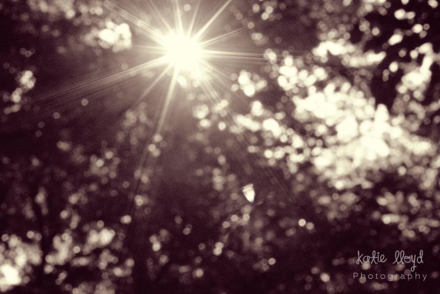 starburst-vintage