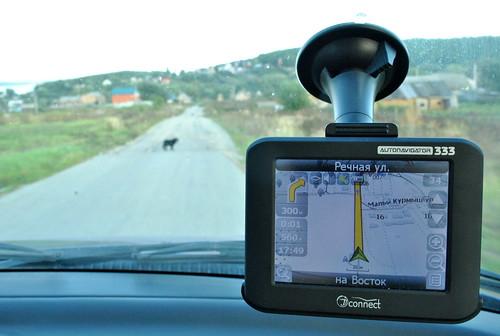 russia map navigation navigator карта openstreetmap навигатор навигация казеевка navital
