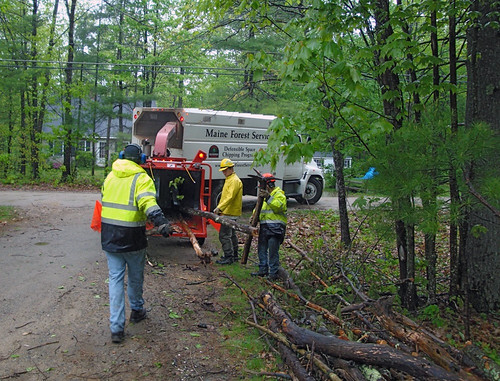 Maine Forest Service, public works, and Waterboro Fire Department chipping brush in May.