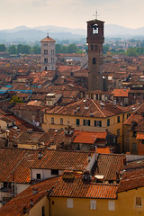 "Torre Guinigi View III • <a style=""font-size:0.8em;"" href=""http://www.flickr.com/photos/55747300@N00/6173624200/"" target=""_blank"">View on Flickr</a>"