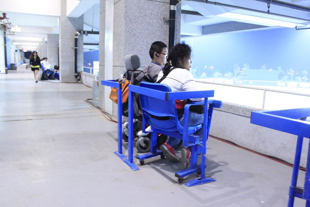 桃園國際棒球場輪椅席