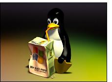 6176180779 cb98719fa1 m - Sigue creciendo el uso de software libre en las empresas españolas