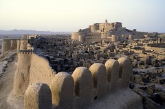 Arg-e Bam , Iran (Citadel of  Bam, Unesco world heritage) (Frans.Sellies (off for a while)) Tags: world heritage de la site iran unesco worldheritagesite adobe list  unescoworldheritage bam worldheritage weltkulturerbe mondial patrimoine humanidad patrimonio  worldheritagelist  welterbe  kulturerbe patrimoniodelahumanidad heritagesite patrimoinemondial werelderfgoed argebam  heritagelist   patriomoniodelahumanidad  adobearchitecture  patriomonio
