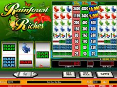 Rainforest Riches