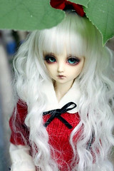 IMG_8216 () Tags: lemon doll bjd ae msd