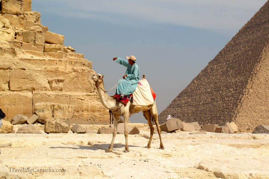 Camel Guide at the Pyramids