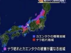 日本での分布2009年