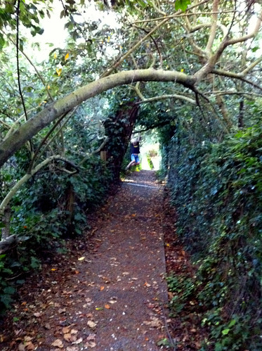 Fairy Tunnel