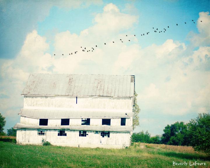 Mead Barn