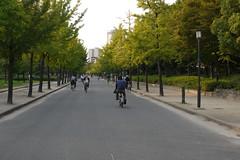 Near Osaka Castle