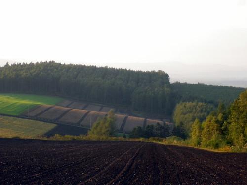 畝~就実の丘