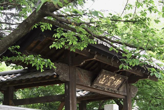 110503_094725_太田_園福寺_十二所神社