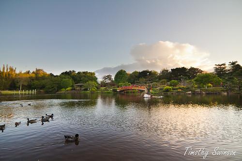 Toowoomba Japanese Gardens-2