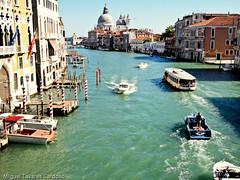 Veneza00455 (Miguel Tavares Cardoso) Tags: venice italy miguel veneza italia venezia cardoso itália tavares otw flickraward worldtrekker panoramafotográfico mallmixstaraward today´sbest migueltavarescardoso ✿solofotos
