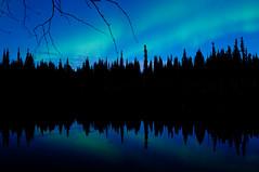 Twigs and reflections (musubk) Tags: trees reflection water silhouette alaska ak aurora northernlights borealis