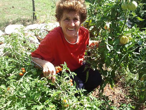 Santina u pomidorima