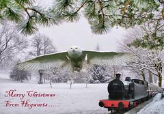 Merry Christmas From Hogwarts (sandimacro) Tags: christmas train merry hogwarts merrychristmas winterwonderland steamtrain christmascard snowyowl hogwartstrain sandracockayne