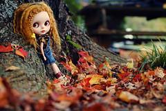 Autumn Moment - 292/365 ADAD 2011