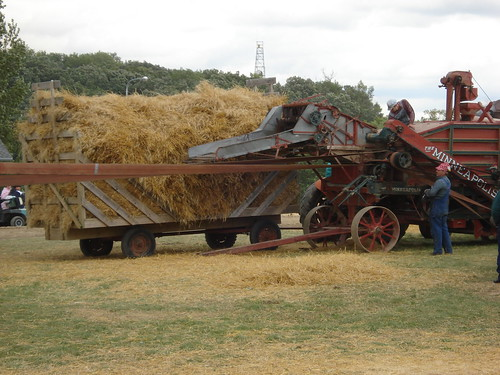 Wheat threshing at WMSTR