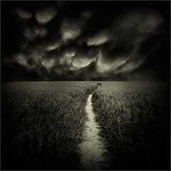 Nyctophile's Dreaming (Olli Keklinen) Tags: sky bw field clouds photoshop dark square landscape nikon scenery darkness path d300 2011 500x500 ok6 ollik 100commentgroup truthandillusion 20110915