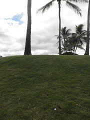 WAIKELE COUNTRY CLUB 104