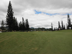 WAIKELE COUNTRY CLUB 146