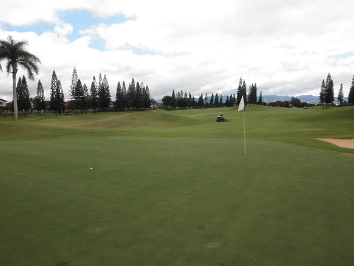 WAIKELE COUNTRY CLUB 151