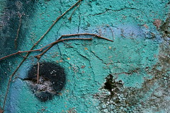 Turquoise Vein (Sheri L. Wright) Tags: urban abstract writing photography decay kentucky abstractart literary author publishing bookcovers bookcoverart literaryimages ithinkthisisartaward magazinephotography traditionalpublishing literaryworld smallpresspublisher coverartpublishing kentuckyart buyingbookcovers sherilwright