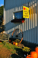 Shelburne Farm (Kadeefoto) Tags: fall shelburnefarm farm massachusetts applepicking stowema