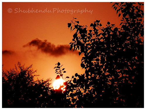 6 by ShubhenduPhotography