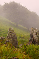 "Misty Mountaintop II • <a style=""font-size:0.8em;"" href=""http://www.flickr.com/photos/55747300@N00/6173085451/"" target=""_blank"">View on Flickr</a>"