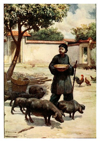 006-Un patio-China 1910- Norman H. Hardy
