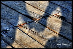 [I]  Ombre al Tramonto (Luca Graziani) Tags: sunset shadow tramonto shadows ombra ombre together woodenfloor insieme pavimentodilegno