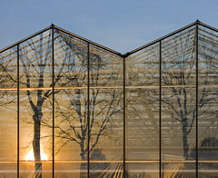 Greenhouses (Jeronim01) Tags: abstract holland color colour reflection art netherlands lines architecture composition canon landscape photography europa europe fotografie angle graphic pov geometry perspective nederland greenhouse reflexions paysbas brabant architectuur landschap gebouw noordbrabant geometrie reflectie grafisch spiegeling compositie linescurves canoneos400d archshot anglesanglesangles abstractcolour geometriegeometry canonnl vanagram mygearandme jeronim jeronim01 jeroenvandewiel
