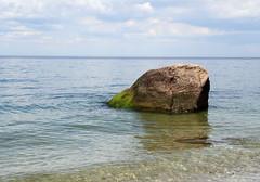 Glacial Erratic in Long Island Sound (sandy richard) Tags: usa newyork unitedstates geology wildwood calverton wildwoodstatepark newyorkstateparks sandyrichard longislandgeology sandrarichard