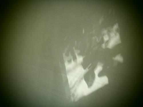 P9046198