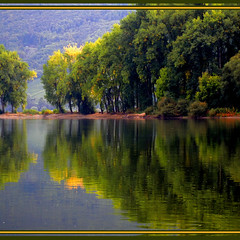 2011 09 26 at the Rheine  Autmn come (Mister-Mastro) Tags: autumn trees sun reflection nature water river fantastic eau wasser herbst arbres fluss sonne rhein bäume reflektion wow2 wow3 colorphotoaward 100commentgroup bestcapturesaoi fleursetpaysages mygearandmediamond ringexcellence blinkagain aboveandbeyondlevel4 flickrstruereflection1 flickrstruereflection2 flickrstruereflection3 flickrstruereflection4 flickrstruereflection5 flickrstruereflection6 flickrstruereflection7 lelitedespaysages 6timesasnice 5timesasnice artistoftheyearlevel7 artistoftheyearlevel6 aboveandbeyondlevel3