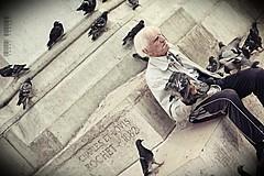 Pigeons whisperer (Rshrsho) Tags: old man paris france guy senior dam pigeon pigeons notredam noterdam noter