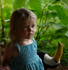 Evie and 'Mr Beakman' (Jo Pye) Tags: travel light portrait cute travelling girl face lumix toddler asia pretty child natural candid snapshot innocent panasonic blonde innocence g1 srilanka evie pure 2011 jopye