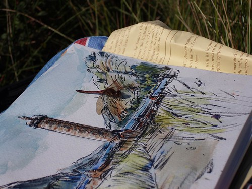Glenfinnan - Dragonfly visitor