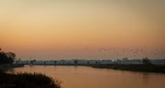abendstimmung (lichtmenge) Tags: sunset red orange rot birds yellow sailboat river germany dark deutschland evening abend sonnenuntergang darkness gelb vgel fluss dunkel segelboot greifswald mecklenburgvorpommern ryck